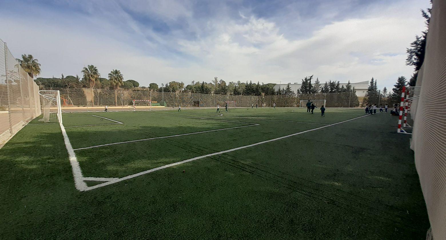 Pista de fútbol hierba